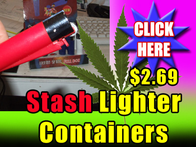 Stash Lighter Container